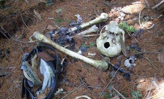Tady nenajdete pravé hřiby, mnohem častěji pravé lidské kosti