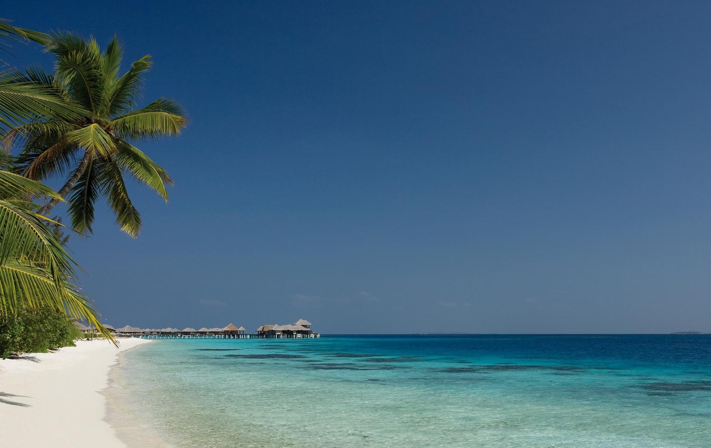 Maledivské zátiší.
