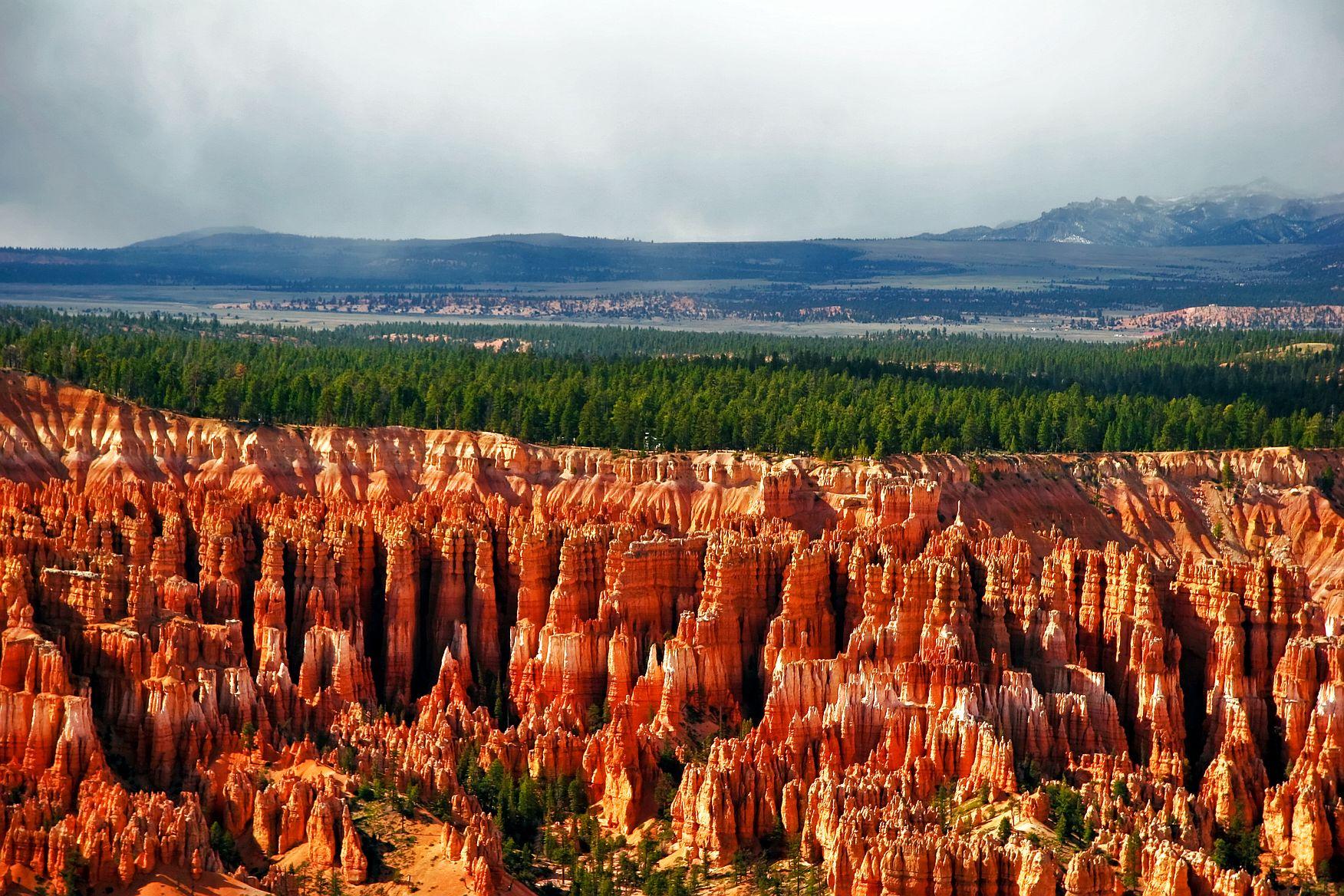 Poznejte blíže rudé jehlany parku Bryce Canyon.