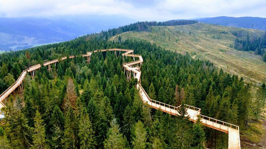 Zatímco v Česku už stezky korunami stromů máme, na Slovensku je ta v Bachledově dolině první.