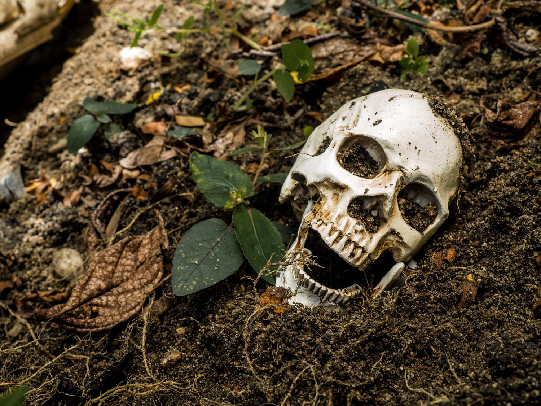 Lebky i kosti sbírali zakladatelé kostnice v Čermné 18 let.