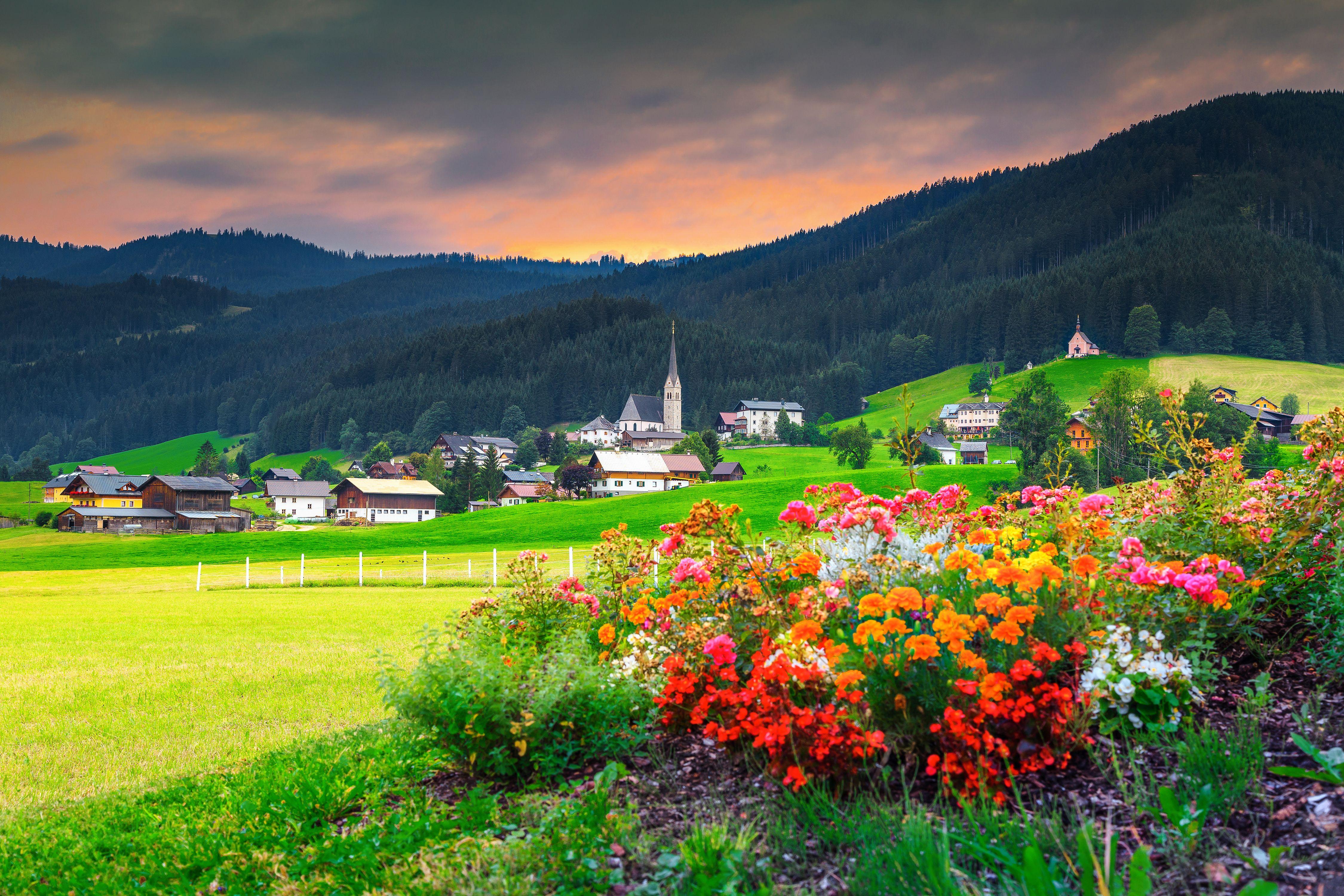 Mezinárodní zahraniční veletrh květin proběhne prvního a druhého září.