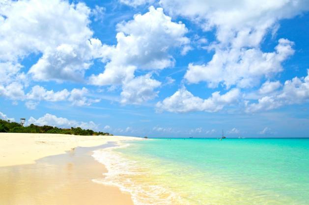 Orgie pláž